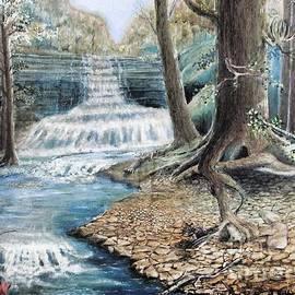 Gerald Ziolkowski - Java Falls