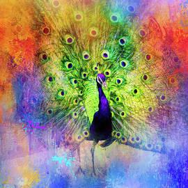 Jai Johnson - Jazzy Peacock Colorful Bird Art by Jai Johnson