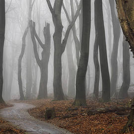 Jeepers Creepers - Martin Podt