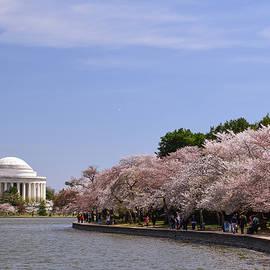 Bob Cuthbert - Jefferson Memorial