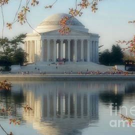 Luv Photography - Jefferson Memorial Wich Reflection And Cherry Blossoms