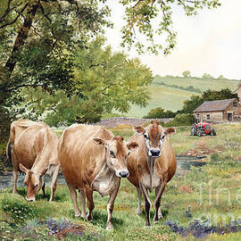 Anthony Forster - Jersey Cows