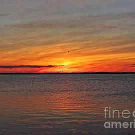 Jeff Breiman - Jersey Shore Sunset HDR