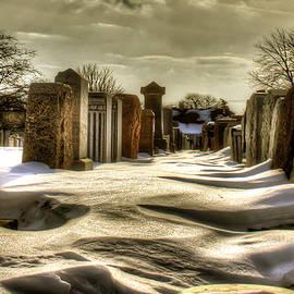 Marc Daneau - Jewish cemetery #1