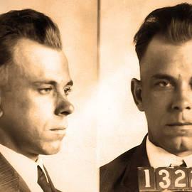 Bill Cannon - John Dillinger - Public Enemy