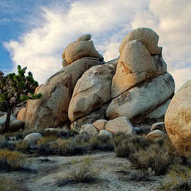 Glenn McCarthy Art and Photography - Joshua Tree Rock Formations At Dusk