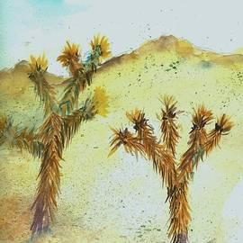 David Patrick - Joshua trees