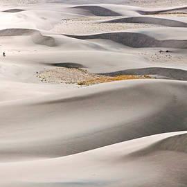 Nicholas Blackwell - Journey