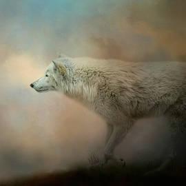 Jai Johnson - Journey of the Timber Wolf