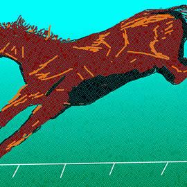 Anand Swaroop Manchiraju - Jumping Horse-4