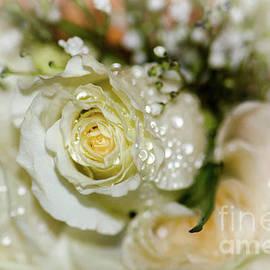 Amy Porter - June Bouquet