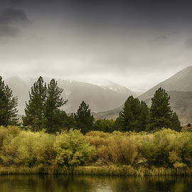 Janis Knight - June Lakes Loop in the Autumn Rain