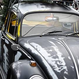 JW Hanley - Junk Bug Traveler