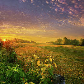 Just Another Post - Phil Koch