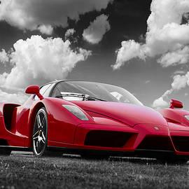 Scott Campbell - Just Red 1 2002 Enzo Ferrari