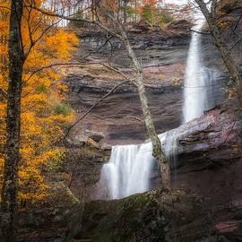 Bill Wakeley - Kaaterskill Falls Thru the Forest Portrait