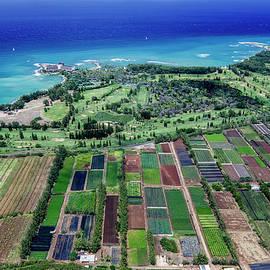 Kahuku Farm Lands near Turtle Bay - Sean Davey