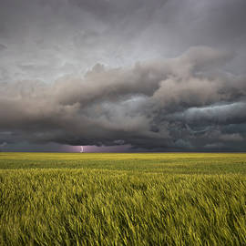 Douglas Berry - Thunderstorm Over Wheat Field