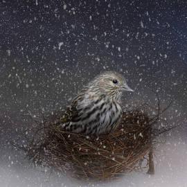 Jai Johnson - Keeping Warm In My Nest