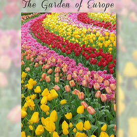 Mike Nellums - Keukenhof coffee table book cover