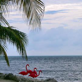 Lin Grosvenor - Key Largo Communal Dip