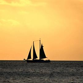 Bill Cannon - Key West Sunset Sail