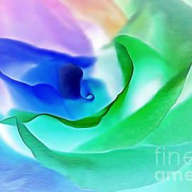 Krissy Katsimbras - Kiss From A Rose