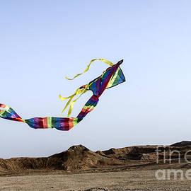 Arik Baltinester - Kite Dancing In Desert 02