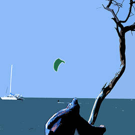 Karen Nicholson - Kite Skiing at the Beach