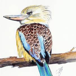 Anne Gardner - Kookaburra 5
