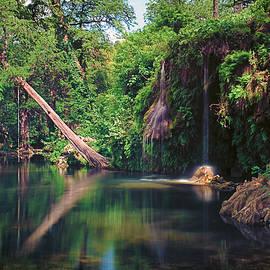 Chuck Underwood - Krauss Springs Waterhole