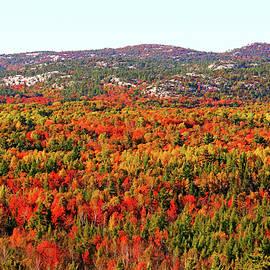 Debbie Oppermann - La Cloche Mountains In Autumn