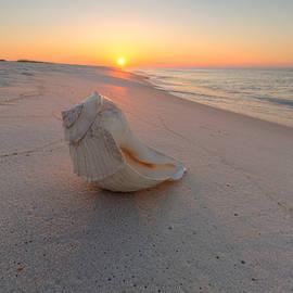 Gary Oliver - La Concha En La Playa