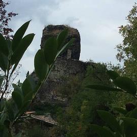 Colette V Hera  Guggenheim  - La Roche Nature France