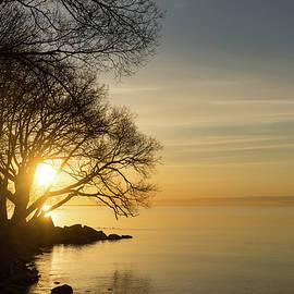 Georgia Mizuleva - Lacy Sunrise -