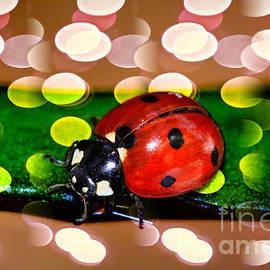 Kasia Bitner - Ladybug in Red