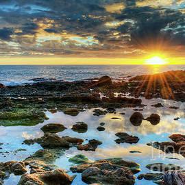Eddie Yerkish - Laguna Beach Tidepools