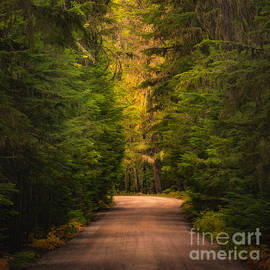 Jerry Fornarotto - Lake McDonald Road