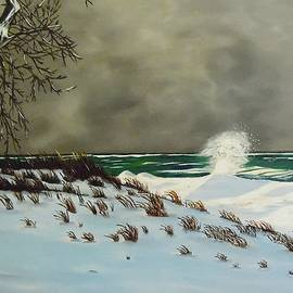 Janet Guss - Lake Michigan In The Winter