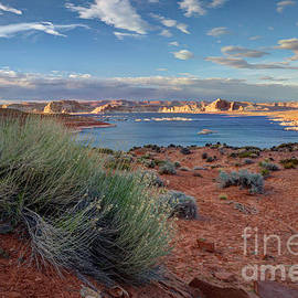 Wayne Moran - Lake Powell Page Arizona