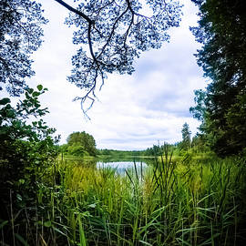 Nicklas Gustafsson - Lake View