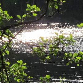 Seija Talolahti - Lake Water Diamonds