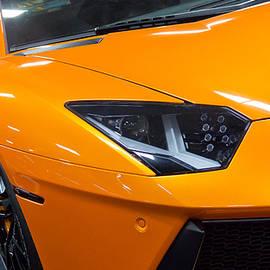 Wayne Vedvig - Lamborghini