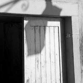 Colleen Williams - Lamp Light