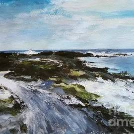 Karina Plachetka - Lanzarote white sand coast