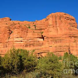 DejaVu Designs - Large Red Rock in Arizona