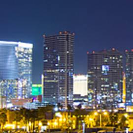 Matt Edwards - Las Vegas City Skyline