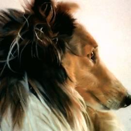 Christine Belanger - Lassie of The Hill