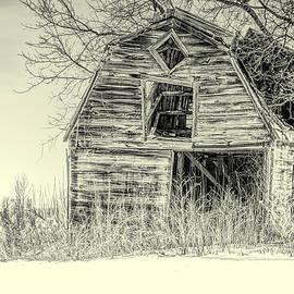 LeeAnn McLaneGoetz McLaneGoetzStudioLLCcom - Last Stand Barn Black and White