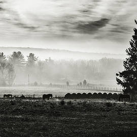 Eduard Moldoveanu - Late fall morning in the countryside black and white